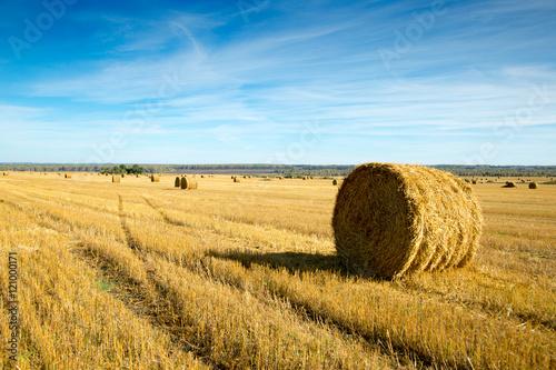 Fotografia, Obraz haystack in a field