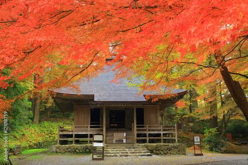 Poster Corail 世界遺産 平泉 中尊寺の紅葉