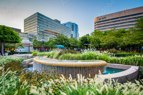 Fototapeta Fountains and modern buildings in Crystal City, Arlington, Virgi