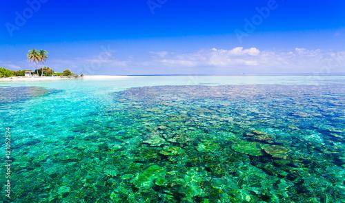 Staande foto Eiland Maldives, tropical sea background 2!