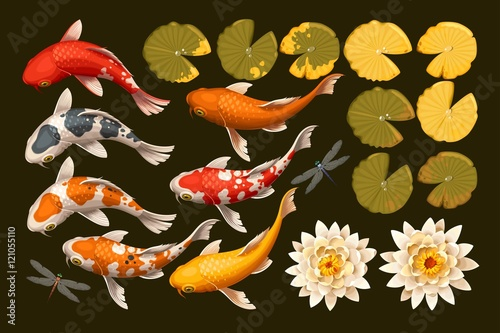 Canvas-taulu Set of koi fish and lotus