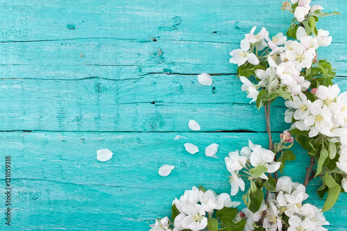 Spring apple tree blossom on turquoise rustic wooden background