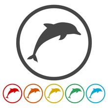 Dolphin Circle, Flat Icons Set. Round Colorful Buttons