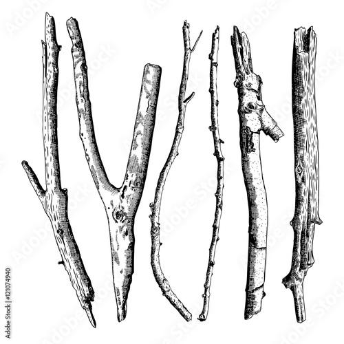 Fotografia  Hand drawn twig branches set