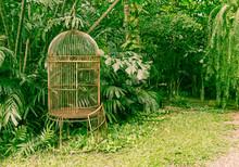 Empty Old Bird Cage In The Garden