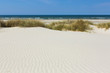 Leinwandbild Motiv Weisser Sand mit Dünengras an der Küste