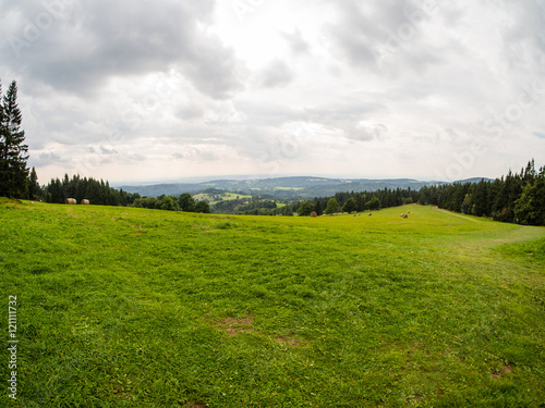 Foto auf Gartenposter Hugel Grass and white cloudy sky, natural panorama