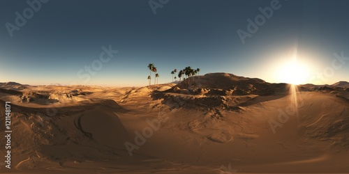 Poster Desert panorama of palms in desert at sunset. made with the one 360 deg
