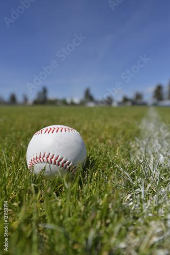 Baseball sitting in grass Poster