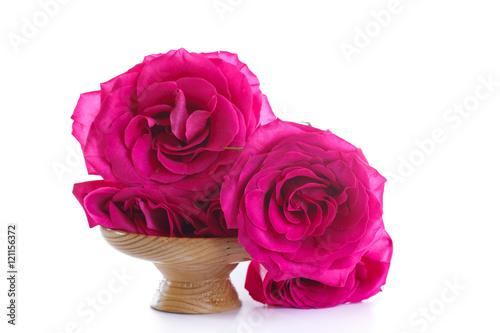 Staande foto Roze beautiful bright pink roses