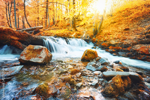 Foto op Canvas Oranje Waterfall on the river in forest