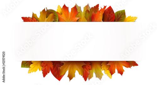 Banner Mit Bunten Herbstblättern Vorlage Kaufen Sie Diese