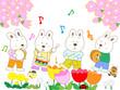春のウサギの演奏会