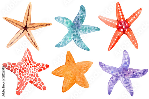Fotografie, Obraz Set of watecolor starfish clipart