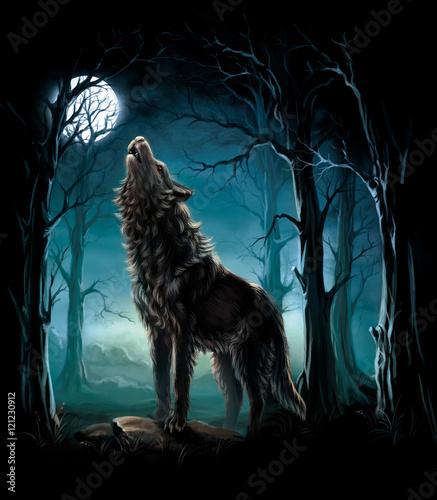 Naklejki wilk  noc-z-wilkiem-wyjacym-do-ksiezyca