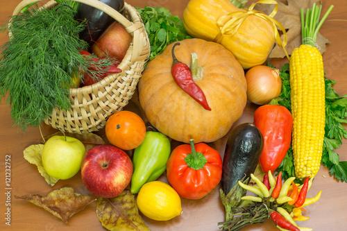 Thanksgiving greeting card © zazdravnaya