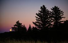 Full Moon Rising In Purple Sil...