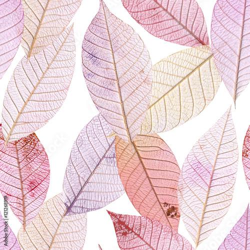 liscie-w-odcieniach-rozu-i-fioletu