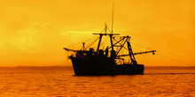 Fishing Boat At Dusk Trinidad And Tobago Gulf Of Paria Leasure And Recreation Pursuit