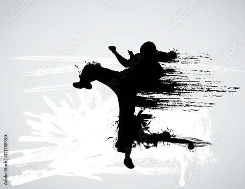 Fotografia  Vector of karate