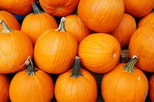 Round Orange Pumpkins In Bulk At The Farmers Market In The Fall