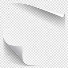 White Gradient Paper Curl With...