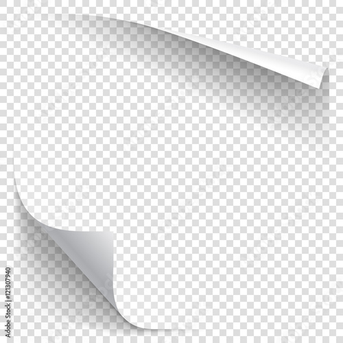 Obraz White gradient paper curl with shadow isolated on transparent background. Vector sticker paper note for memo and notice. Vector template illustration for your design - fototapety do salonu