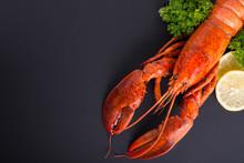 Canadian Lobster Food