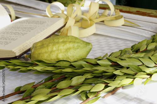 Zdjęcie XXL Cztery gatunki używane na święto żydowskie Sukkot gotowy do złożenia na tle świętej księgi