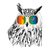 Vector sketch of owls with glasses. Retro illustration - 121332744