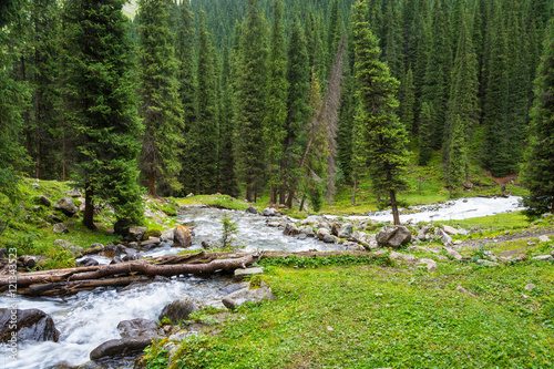 Mountainous Landscape with the rough river, Kyrgyzstan. #121343523