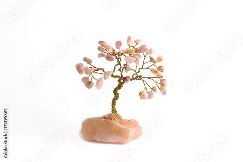 Fotografie, Obraz  Tree on a white background