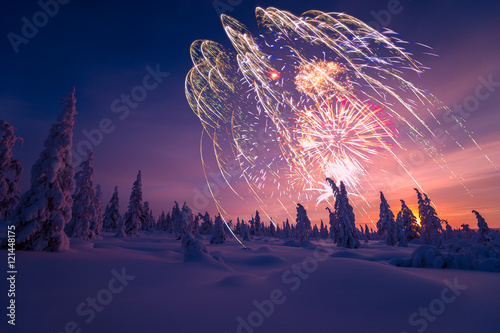 Foto auf Gartenposter Nordlicht Happy New Year card with firework, forest and northern light.