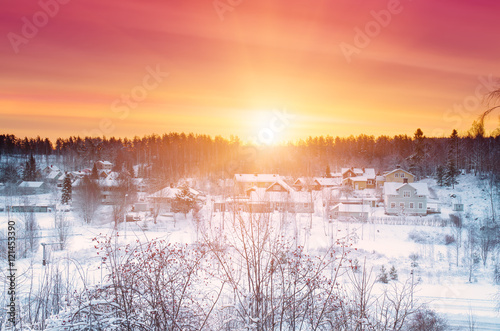 Poster Corail Winter sunset landscape with dramatic sky in Sweden, north scandinavian seasonal hipster background.