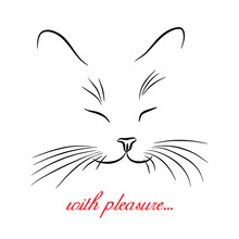 Image Of Cat Muzzle With Long Whiskers. Vector Illustration.