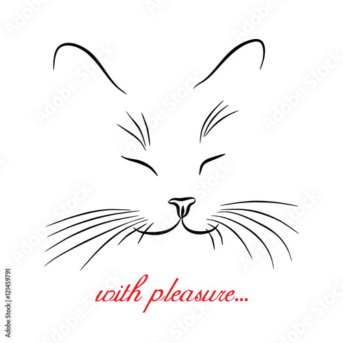 Photo Image of cat muzzle with long whiskers. Vector illustration.