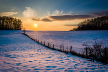 Winter Sunset Over A Fence And...