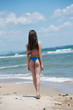 Slim girl wear bikini, beach with wild waves, vertical and full body length photo