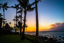 Palms, Maui Sunset, And Distant Molokai