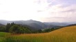 Beautiful pastures in the mountains. Big hay, not harvested yet.