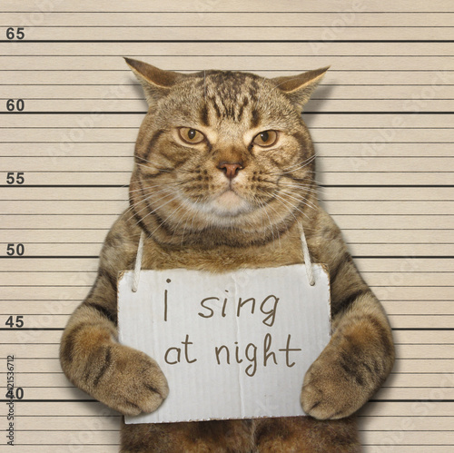 A cat often sings at night. It's songs keep people awake. It was arrested for this. Wall mural