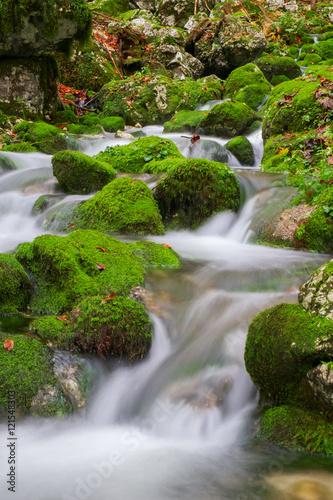 Foto auf Gartenposter Forest river Mountain creek in the autumn forest in Triglav national park