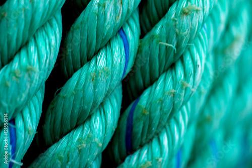 Photo sur Aluminium Aquarelle avec des feuilles tropicales Fisherman rope, rope use in the sea.