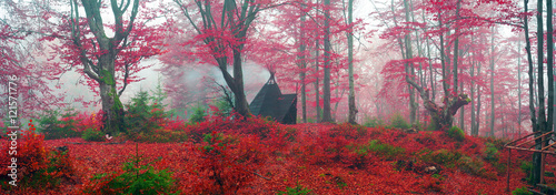 Garden Poster Brown Wigwam in the autumn forest