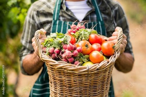 Fotografie, Obraz  Mid section of farmer holding a basket of vegetables