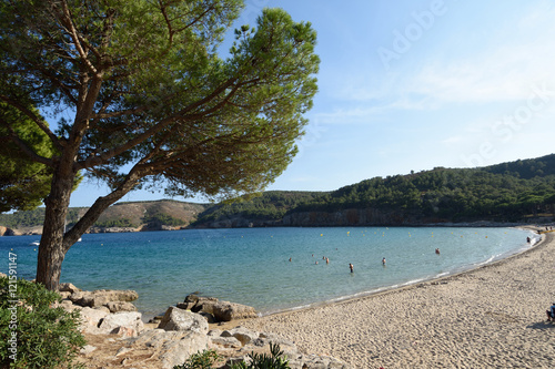 Fototapeta Beach of Montgo, Costa Brava, Girona province, Spain obraz na płótnie