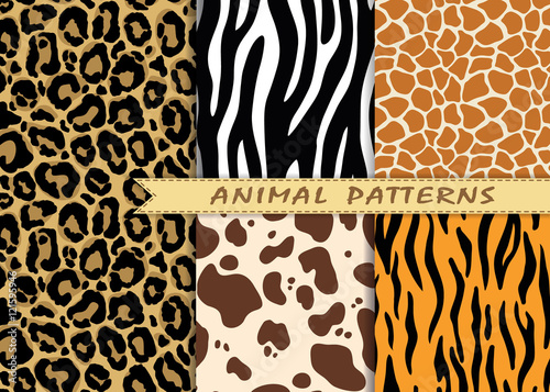 fototapeta na szkło Vector seamless patterns set with animal skin texture. Repeating animal backgrounds for textile design, scrapbooking, wrapping paper. Vector animal prints.