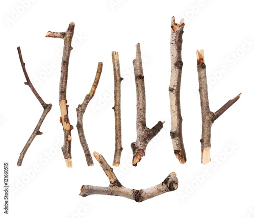 Twigs, set macro dry branches birch isolated on white background, with clipping path, ( high resolution ) Fototapete