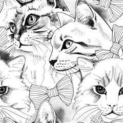 Seamless pattern with image of a cat portrait in tie. Vector illustration.