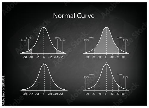 Fototapeta Collection of Normal Distribution Diagram on Black Chalkboard Background obraz na płótnie
